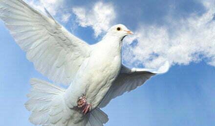 Duch Święty przyjdź! Adoracja przed Uroczystością Zesłania Ducha świętego